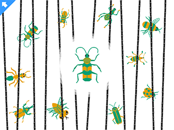 Drawing of a colorful bug in the center surrounded by smaller colorful bugs slightly obscured by blades of grass.