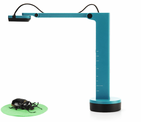 An L-shaped blue document reader above a large beetle.