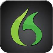 Dragon Go! logo.