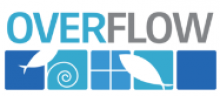 Overflow Biz Inc Logo
