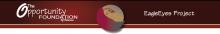 EagleEyes Logo