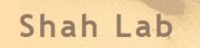 Shah Lab Logo