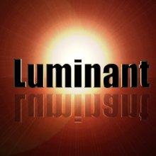 Luminant Software, Inc logo
