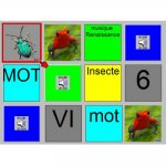 Mémoldée screen with colorful boxes in a 4x3 grid. Inside the squares are real pictures of bugs, words, a pic of an audio speaker, and a number. Some of the squares are repeated, some have minor differences to another.